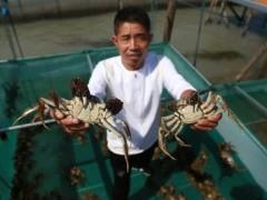 太湖螃蟹产业铺就绿色小康道路