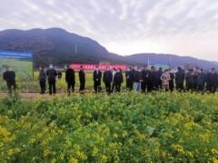 桂林:以科技为核心 推动绿肥生产 实现提质增效