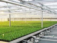 浙江省农业科技进步贡献率已高达65.15%