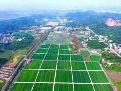 河南:加强农业科技园区建设,治理打造现代化农业产业发展样板