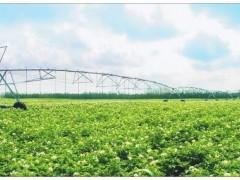 浙江大力拉动农业投资,共创高质量农业发展