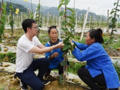 梁平区:农技人员面对面教农户生产,助力春耕作业高质量完成