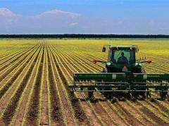 芷江侗族自治县:农业服务保障农业生产,助力夏粮丰收