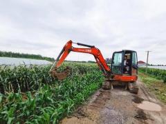 武汉蔡甸:侏儒原种场正在全力以赴恢复生产,降低农户损失