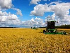 漳平市南洋镇多举并措夯实农业安全生产工作
