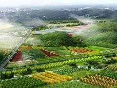 """呼兰区大用镇:""""绿色""""农业循环产业链,推动农民增收致富"""