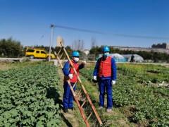 农安供电:全力保障群众用电,确保春耕高效完成