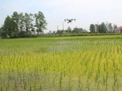 建湖县:虾田投料用上无人机,推动农业更现代化发展