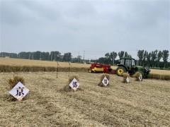 丰收进行时!北京20万亩小麦开镰收割