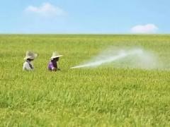 农业农村部全面排查农药方面问题,降低安全隐患发生